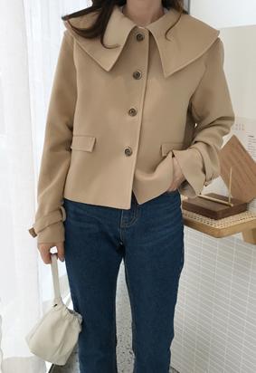 Collar crop jacket (2color)